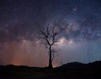 Vintergatanstjärnaslinga Royaltyfria Bilder