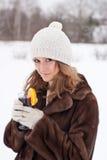 Vinterglädje. Royaltyfria Bilder