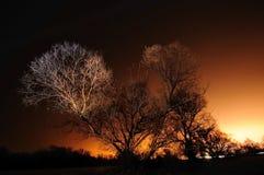 Vintergränd Arkivfoton