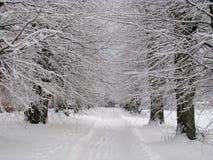 Vintergränd Royaltyfri Fotografi