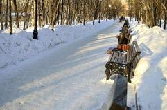 Vintergränd Royaltyfria Foton