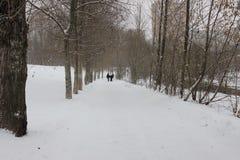 Vintergränd Fotografering för Bildbyråer