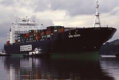 Vintergrön behållareShip Royaltyfri Foto