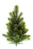Vintergrön jultree som är undecorated på white Fotografering för Bildbyråer