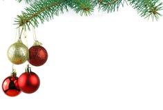 vintergrön spruce tree för jul Arkivbild