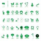 vintergröna symboler för samling Royaltyfri Bild
