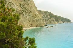 Vintergrönt träd med en grekisk kust- bakgrund Royaltyfri Foto