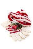 Vinterhatt och handskar Royaltyfri Fotografi