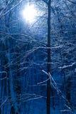 Vinterhopp Royaltyfri Bild