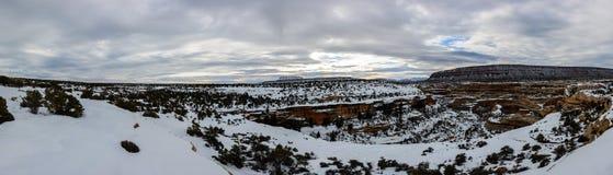 Vinterkanjon i Arizona Arkivbilder
