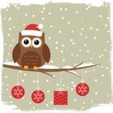 Vinterkort med den gulliga owlen Fotografering för Bildbyråer