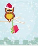 Vinterkort med den gulliga owlen Royaltyfria Bilder
