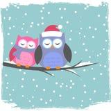 Vinterkort med gulliga owls Royaltyfri Fotografi