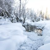 Vinterkristaller Arkivbild