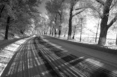 Vinterkurva Royaltyfria Foton