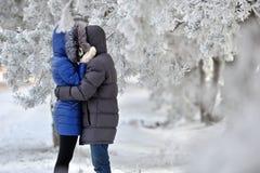 Vinterkyss royaltyfria bilder