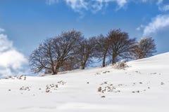 Vinterlandascape Arkivbild