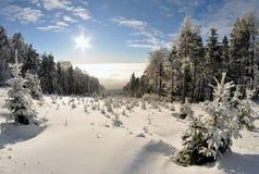 Vinterlandskap fotografering för bildbyråer