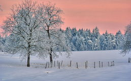 Vinterlandskap Arkivbilder