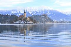 Vinterlandskap av Bled sjön Royaltyfri Bild