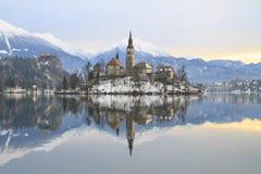 Vinterlandskap av Bled sjön Arkivbilder