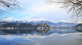 Vinterlandskap av Bled sjön Royaltyfri Fotografi