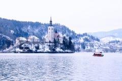 Vinterlandskap av Bled sjön, Slovenien Fotografering för Bildbyråer