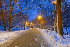 Vinterlandskap av snöig parkerar i Gdansk Royaltyfria Bilder