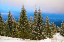 Vinterlandskap, Carpathian berg Royaltyfria Foton