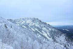 vinterlandskap - ett berg som täckas i snö arkivbild