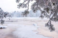 Vinterlandskap från den finlandssvenska naturen Arkivfoton
