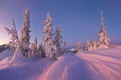 Vinterlandskap i aftonen Fotografering för Bildbyråer