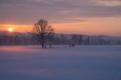 Vinterlandskap i aftonen Arkivbild