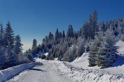 Vinterlandskap i bergen 21 Arkivfoton