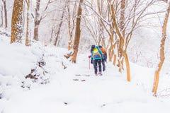 Vinterlandskap i bergen med den fallande snö och fotvandraren Royaltyfri Foto