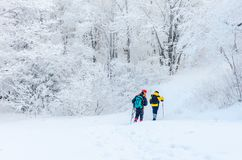 Vinterlandskap i bergen med den fallande snö och fotvandraren Arkivfoton