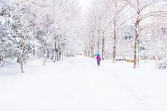 Vinterlandskap i bergen med den fallande snö och fotvandraren Royaltyfria Foton