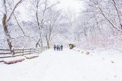 Vinterlandskap i bergen med den fallande snö och fotvandraren Fotografering för Bildbyråer