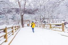 Vinterlandskap i bergen med den fallande snö och fotvandraren Royaltyfria Bilder