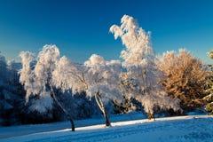 Vinterlandskap i Buzludja, Bulgarien Arkivbild