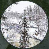 Vinterlandskap i den Oulanka nationalparken Ruka Finland arkivbild
