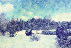Vinterlandskap i Lettland, Östeuropa Royaltyfri Foto