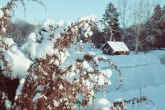 Vinterlandskap i Lettland, Östeuropa Royaltyfri Fotografi