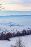 Vinterlandskap i Novi Pazar, Serbien Royaltyfri Fotografi