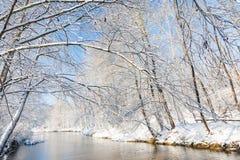 Vinterlandskap: liten flod i snöig trän Fotografering för Bildbyråer