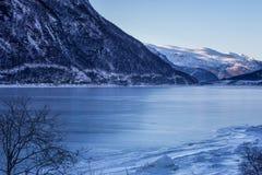 Vinterlandskap med berg och havet royaltyfri bild