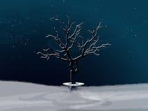 Vinterlandskap med den vitabstrakt begreppträdet och bänken Royaltyfri Fotografi