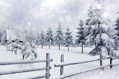 Vinterlandskap med det snöig staketet för annons för granträd Royaltyfri Bild