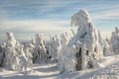 Vinterlandskap med djupfryst snö Arkivbild