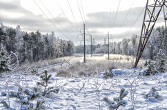 Vinterlandskap med electro linjer Royaltyfri Fotografi